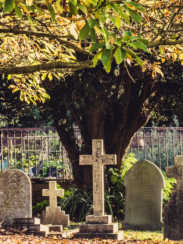 churchyardwilton-1000981