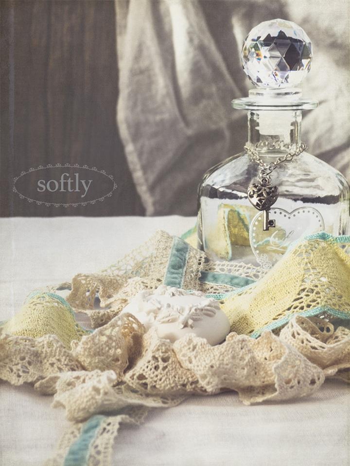 softlyP1200421