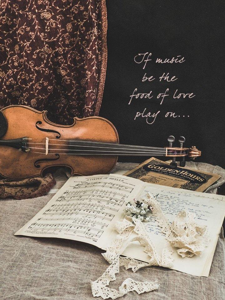 mucisquote_violin